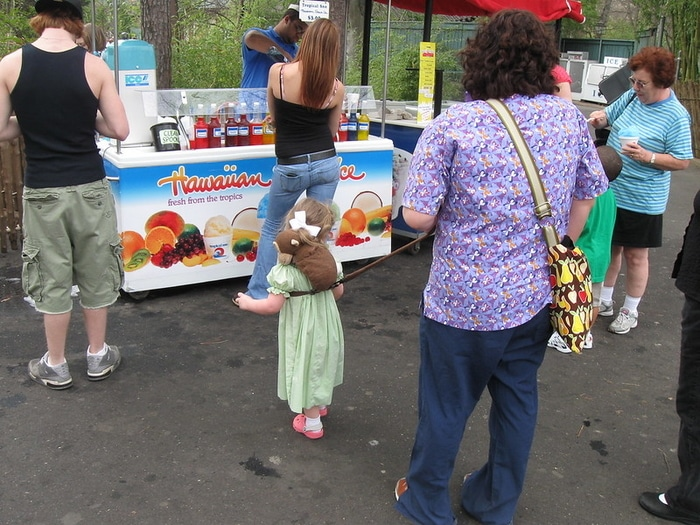 Should You Get A Child Leash Or Not?