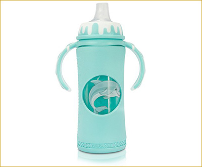 GoGlass Glass Baby Bottle 10 oz