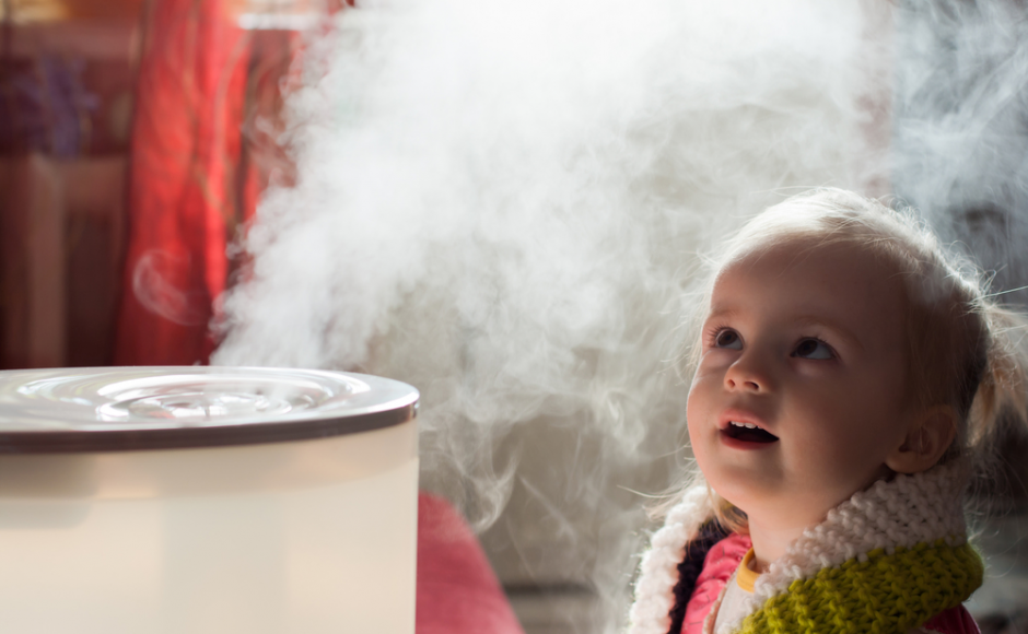 Best Humidifier: Cost Effective, Easy To Use, And Affordable